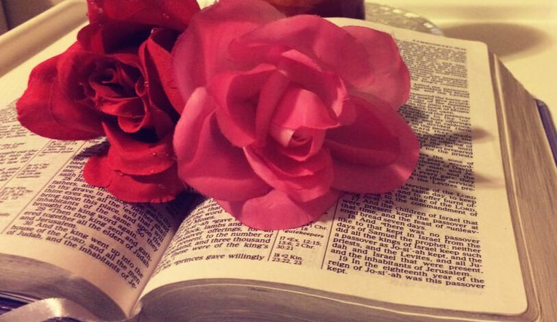 Picture of an open bible with flowers laying on the pages